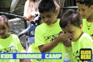 crazy-88-kids-summer-camp